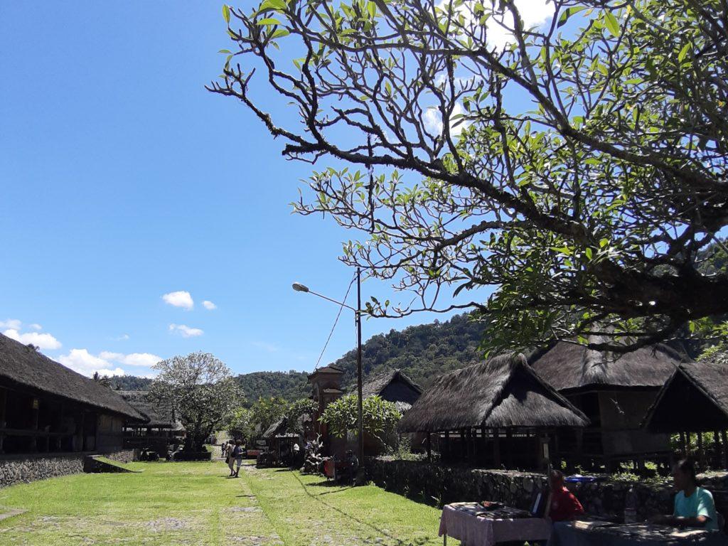 バリ島、バリアガの村 トゥガナン村