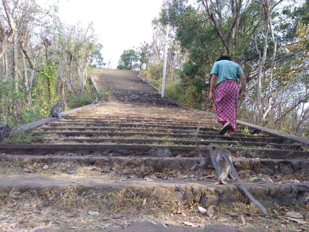 グマン寺院の階段長い