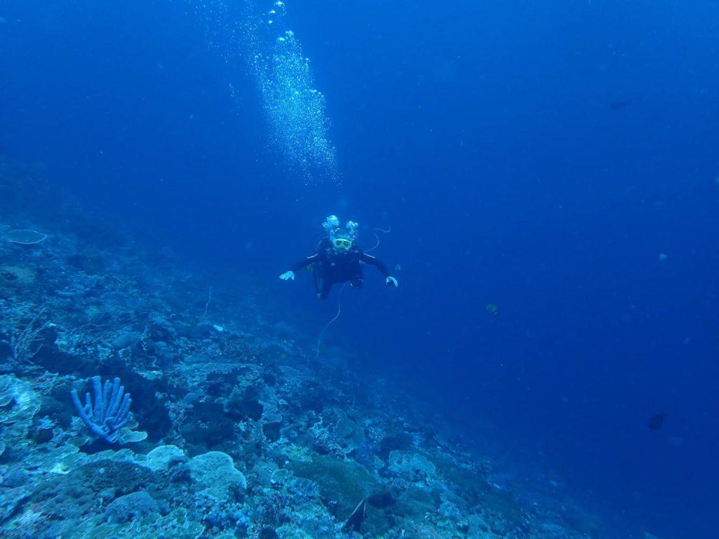 SDポイントの海中スロープ