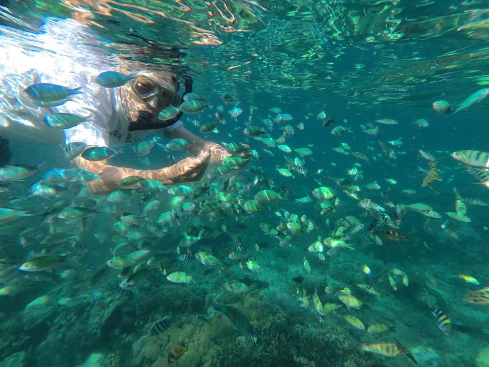 レンボンガン島のシュノーケリング